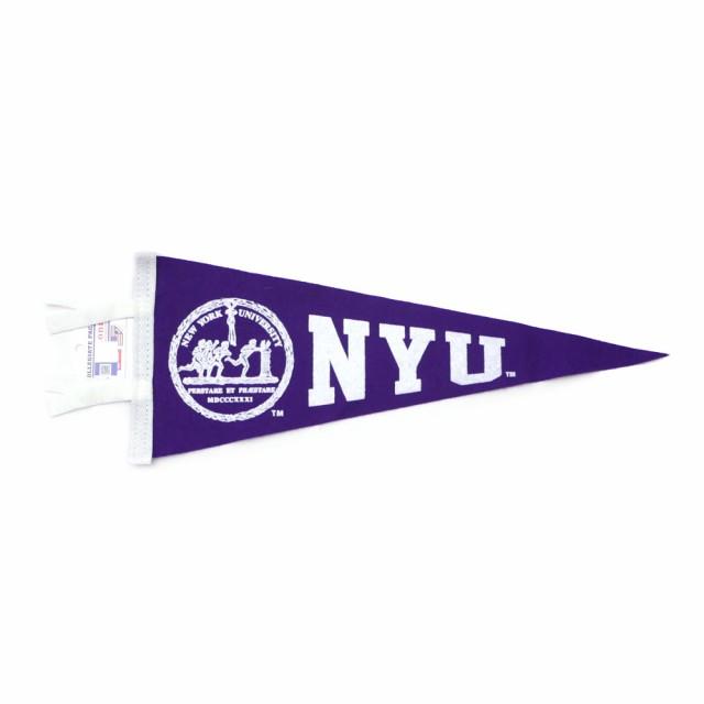 ニューヨーク 大学 NYU New York University Coll...