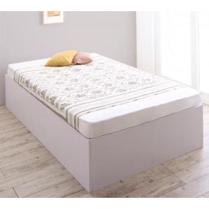 収納ベッド SaiyaStorage サイヤストレージ 薄型...