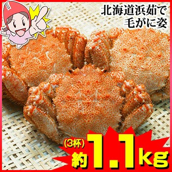 北海道浜茹で毛がに姿 約1.1kg (3杯)【送料無料】...