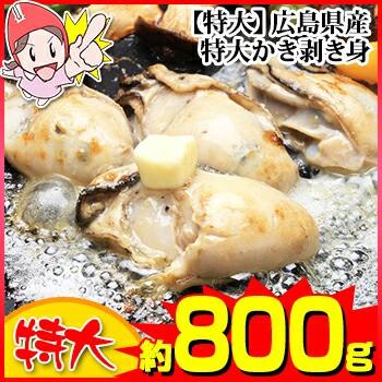 【特大】広島県産特大かき剥き身 【約800g】