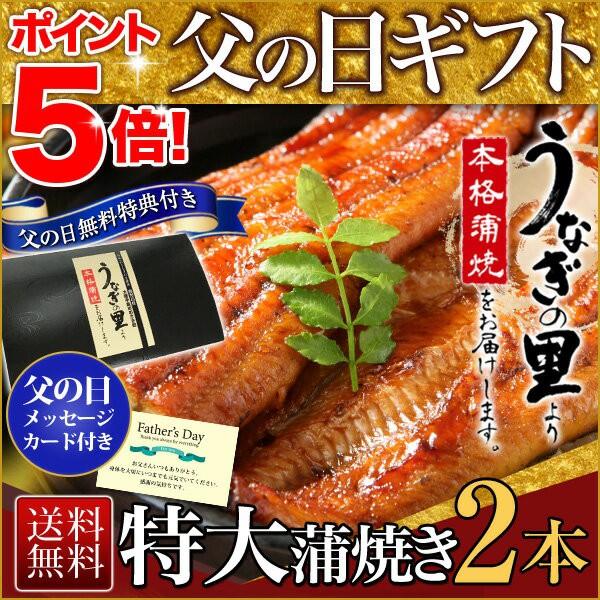 父の日 うなぎ グルメ 食べ物 蒲焼き 国産 鹿児島...