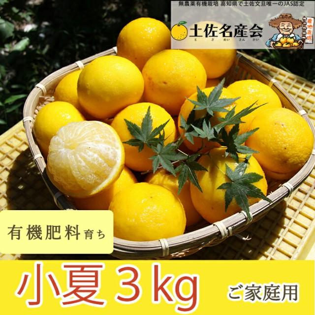 有機肥料で育てた小夏(3kg)ご家庭用 ※送料別途...