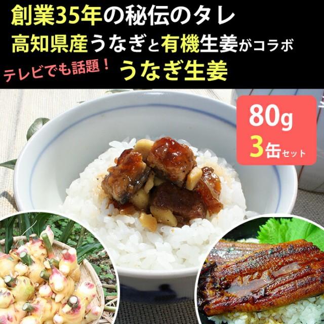 うなぎ生姜 3瓶セット 佃煮/有機栽培の黄金生姜で...