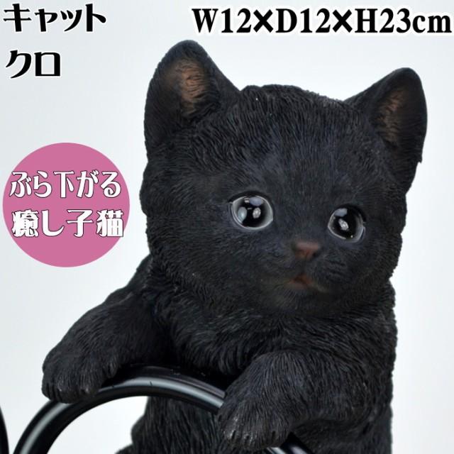ハンギングベビーキャット クロ ぶら下がり猫 ( ...