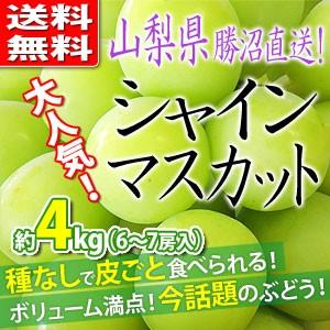 【送料無料】シャインマスカット 約4kg 山梨県勝...