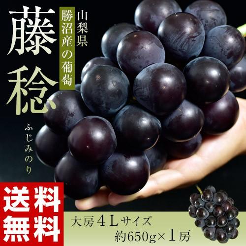 ぶどう 葡萄 送料無料 山梨 勝沼産 藤稔 ふじみの...