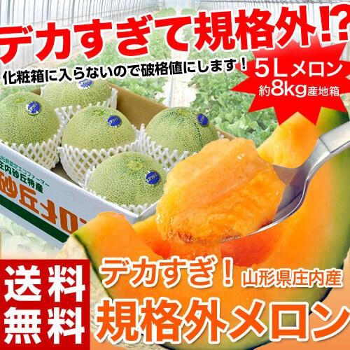【緊急スポット!!】 メロン 送料無料 山形 庄内 ...