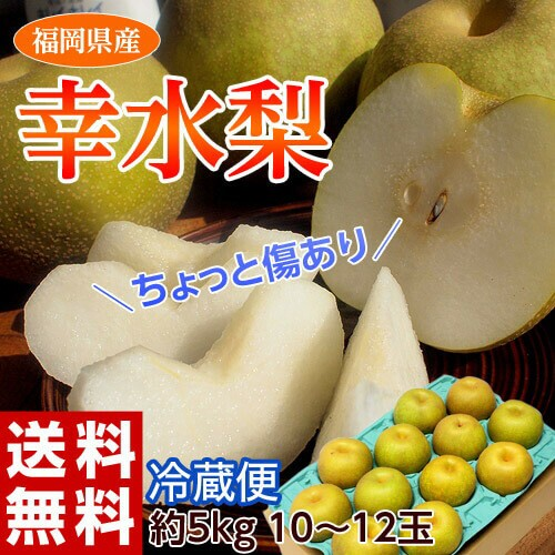 梨 なし ナシ 送料無料 福岡 幸水梨 約5キロ 大玉...