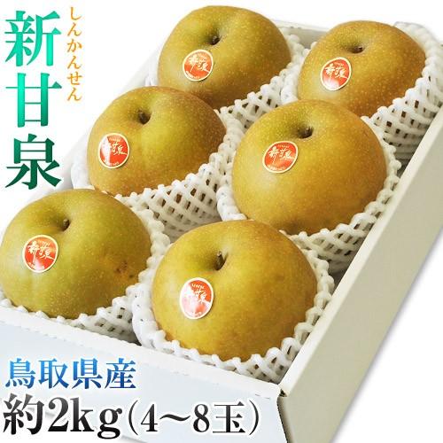 鳥取県オリジナル品種「新甘泉(しんかんせん) 梨...