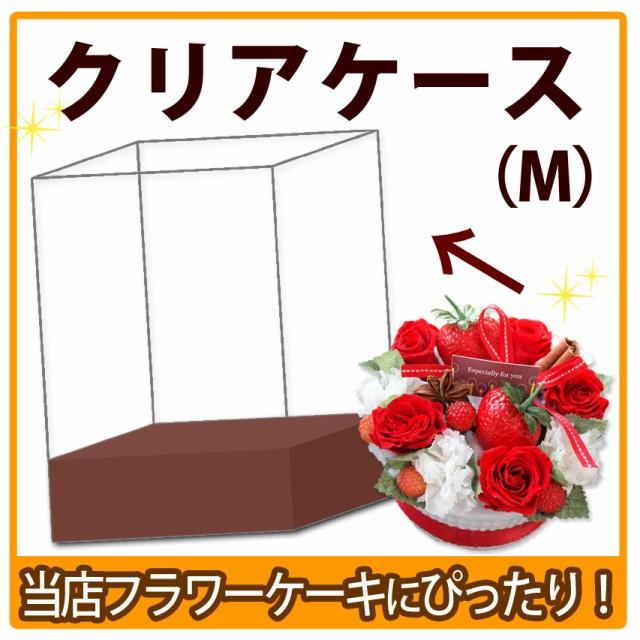 プリスタイルボックス(M)〜クリアケース【資材...
