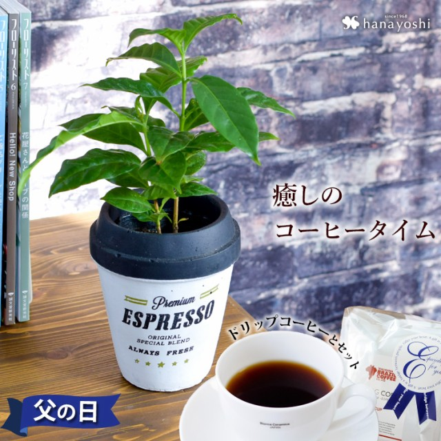 父の日 ギフト 送料無料 コーヒータイム コーヒー...