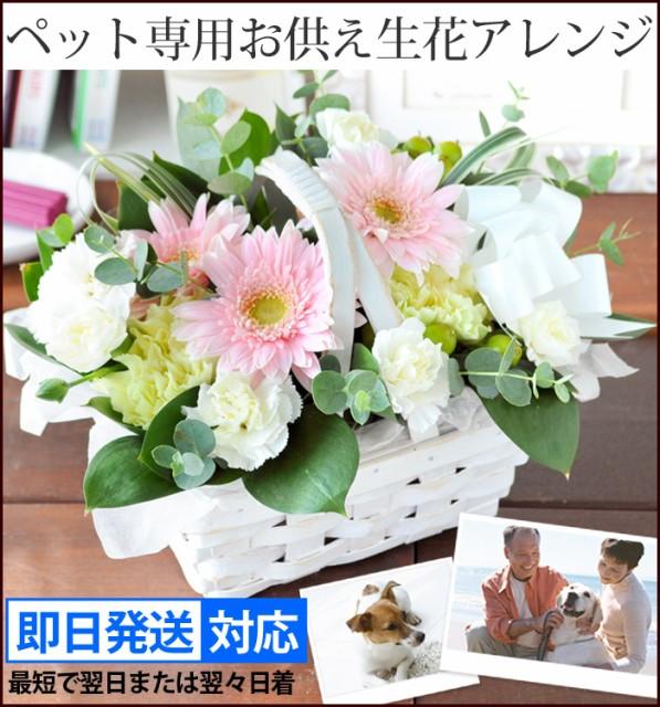 送料無料 ペットに贈る〜お供え生花アレンジメン...