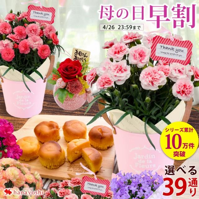 早割 母の日 花とセット 母の日ギフト 花 送料無料 組合せ39通り 13種類から選べるお花と3種類から選べるスイーツのセット