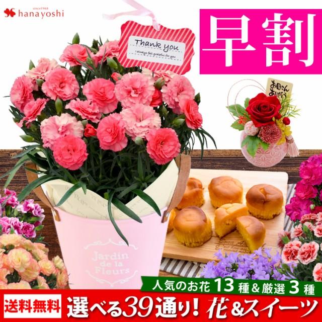 早割 母の日 花とセット 母の日ギフト 花 送料無料 組合せ39通り 13種類から選べるお花と3種類から選べるスイーツのセット 鉢植え プレゼ