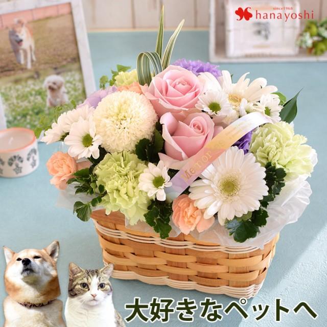 ペットに贈るお供え生花アレンジメント 「ciel-NEW シエル」 お供え花 仏花 フラワー 花 お悔やみ 虹の橋 ペット供養 お供え お悔やみ お