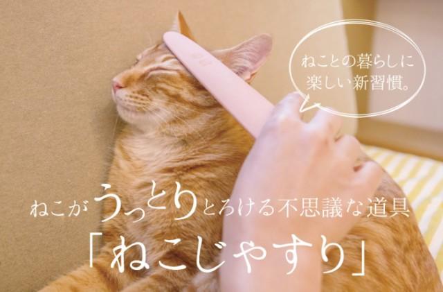 【ワタオカ】ねこじゃすり
