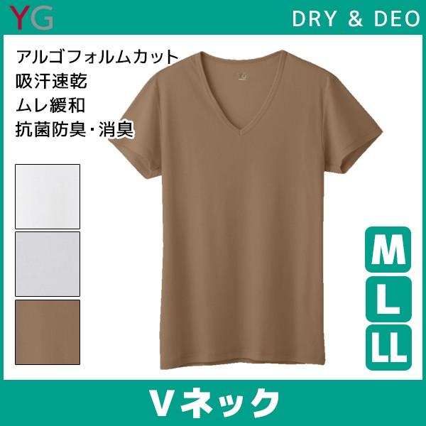 YG VネックTシャツ グンゼ YV0115