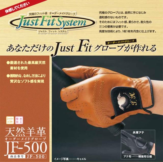 JF-500ギフトにも最適!あなただけのJust Fitグロ...