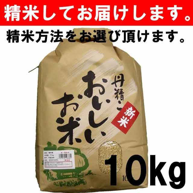 【平成30年度産】福井県産 はなえちぜん 一等玄...