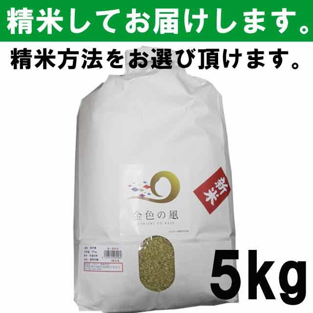 【平成30年度産】 岩手県産 金色の風 一等玄米1...