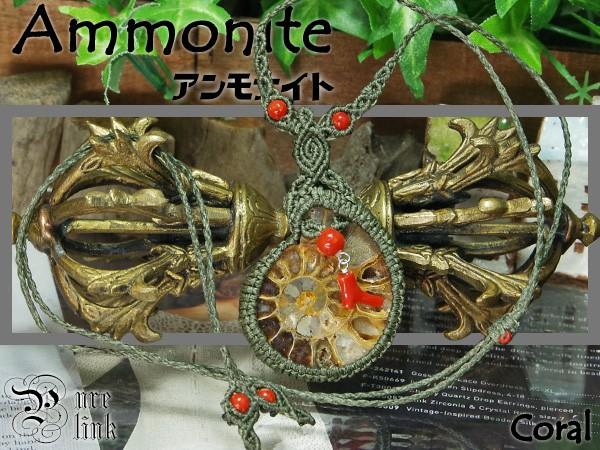 太古生命の力が宿る『アンモナイト』と『赤珊瑚』...