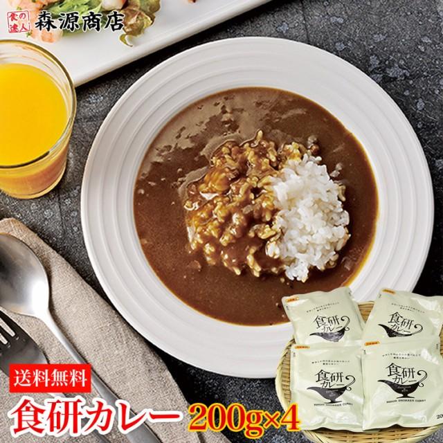 1000円ぽっきり P10% 食研カレー 200g×4袋 メー...