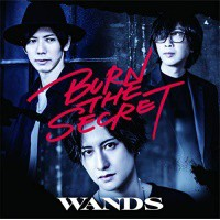 CD / WANDS / BURN THE SECRET (CD+DVD) (初回限...
