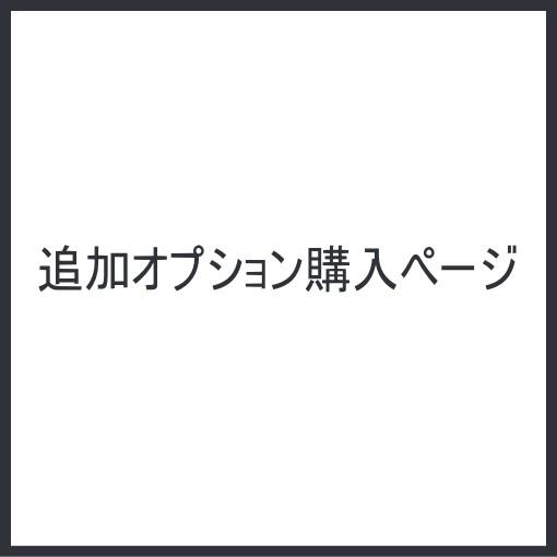 追加オプション/購入ページ