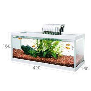 《水槽セット》テトラ ホワイトアクアリウム スリム&ロー 420 40cm 熱帯魚 金魚 ガラス水槽 インテリア おしゃれ