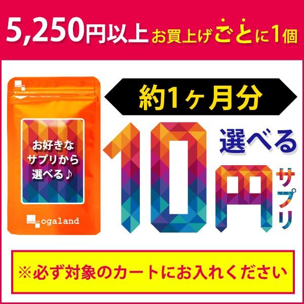 10円で選べるおまけサプリ【5250円以上の購入カゴ...