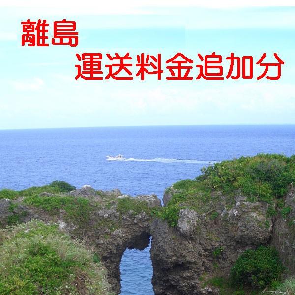 【運送料金追加チケット】離島(沖縄県以外)運送...
