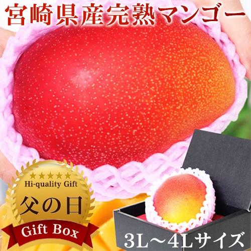 父の日 ギフト 特大宮崎マンゴー 1玉 化粧箱入...