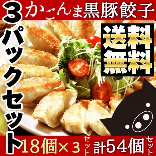 父の日 鹿児島県産黒豚入り かごんま餃子 54個(1...