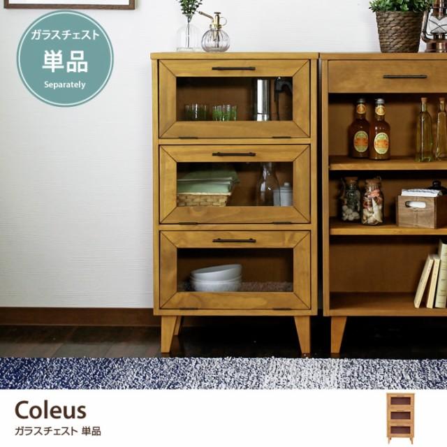 【g6066】Coleus コリウス チェスト ガラスチェ...