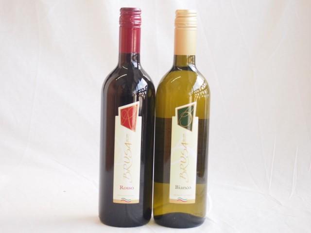 ペアセレクションイタリア赤白ワイン2本セット チ...