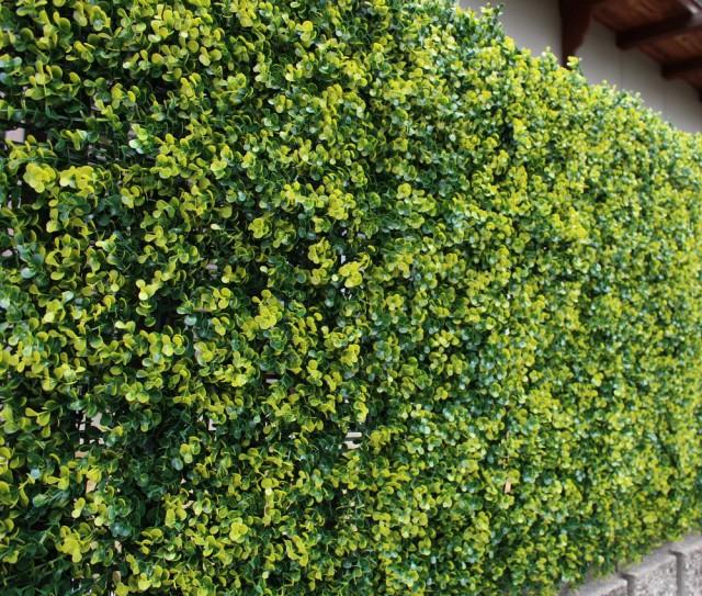 リアルグリーンフェンス 目隠し 日除け 壁面装飾 ...