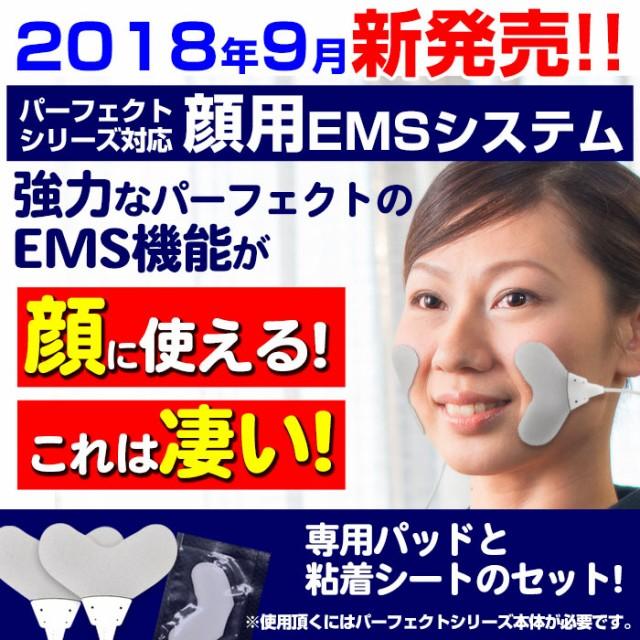 顔用EMSシステム 干渉波EMS パーフェクト4000 450...