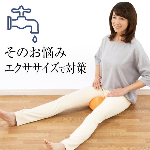 骨盤底筋エクササイズ キュットクッション 座椅子...