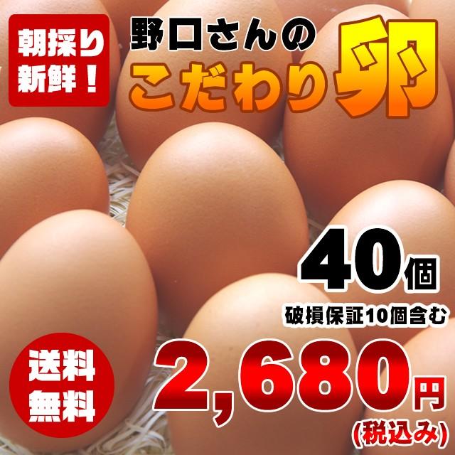 【送料無料】朝採り新鮮野口さんのこだわり卵40個(破損保証10個含む)※同梱不可商品※ 俺達の晩餐