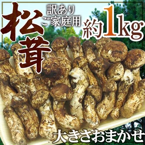 """中国産 """"松茸"""" 約1kg 訳あり 開き方・大きさおまかせ【予約 7月〜8月以降】 送料無料"""