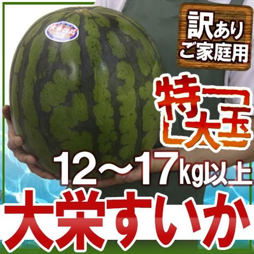 """鳥取県 """"ジャンボ大栄すいか"""" 訳あり 特大6L 約..."""