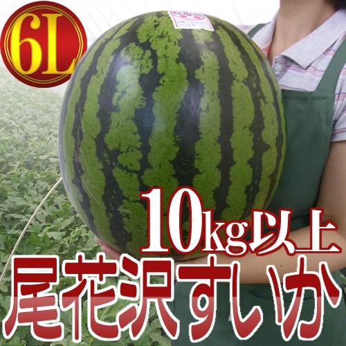 """【送料無料】山形県産 """"尾花沢スイカ"""" 6Lサイズ..."""