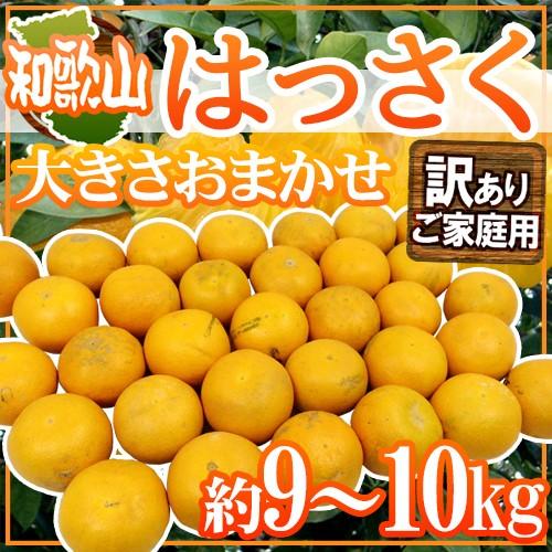 """【送料無料】和歌山産 """"はっさく"""" 訳あり 約9〜..."""
