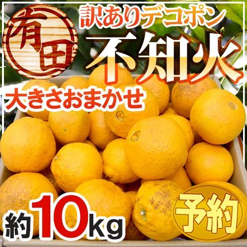 """【送料無料】有田産 """"不知火・しらぬい(訳あり..."""