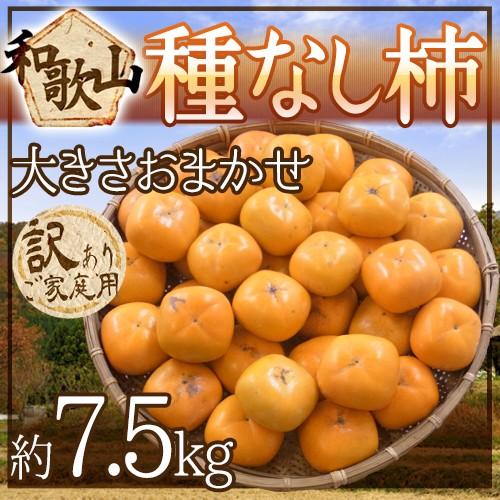 """【送料無料】和歌山産 """"たねなし柿"""" 訳あり 約7..."""