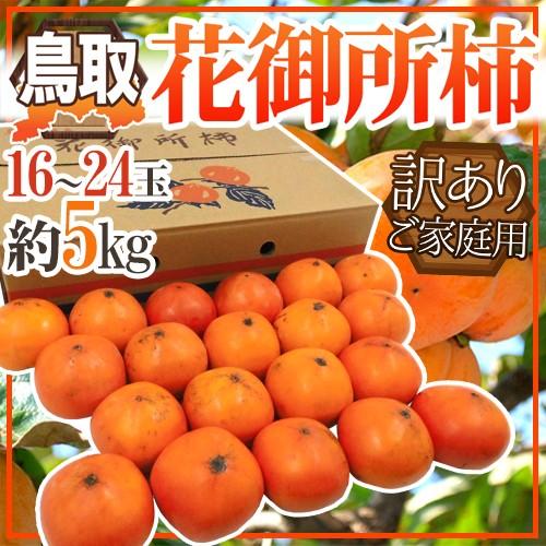 "【送料無料】鳥取産 ""花御所柿"" 訳あり 16〜24..."
