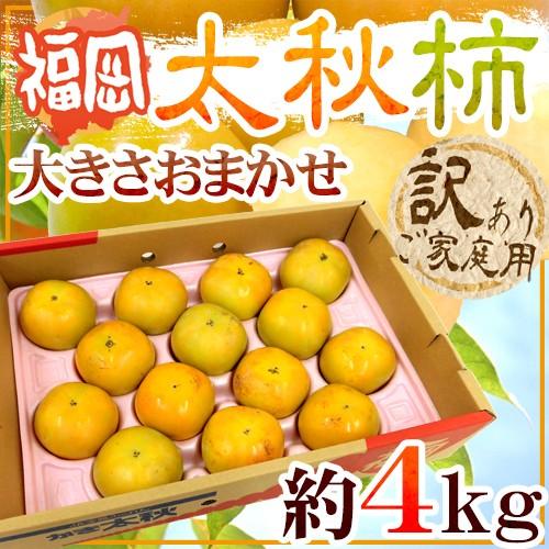 """【送料無料】福岡産 """"太秋柿"""" 訳あり 約4kg 大..."""