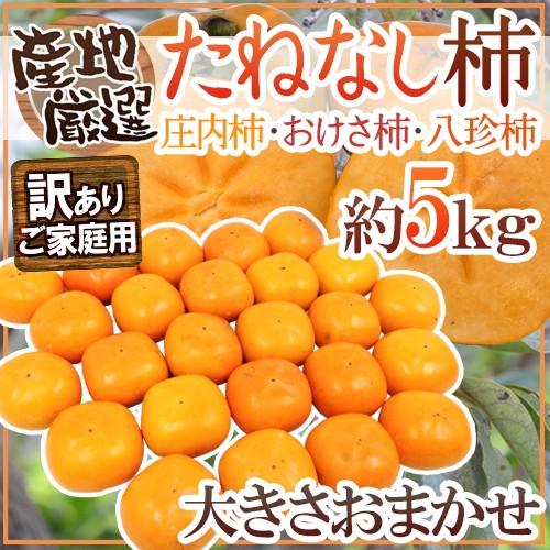 """【送料無料】""""たねなし柿"""" 訳あり 約5kg 大きさ..."""