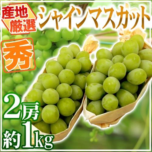 """【送料無料】""""シャインマスカット"""" 秀品 2房 約..."""