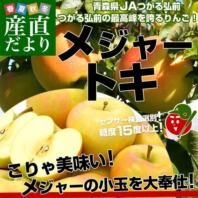 青森県より産地直送 JAつがる弘前 弘前のりんご ...